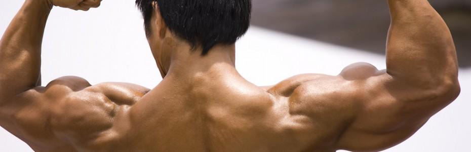 Un homme en séance de musculation