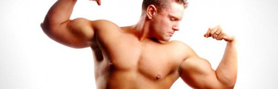 La prise de masse musculaire